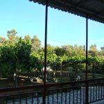 villa gardenia12